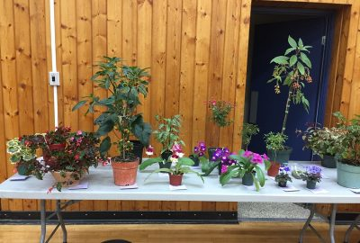 Show Table 2018 – 07 July